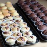 Cupcake vs. Muffin